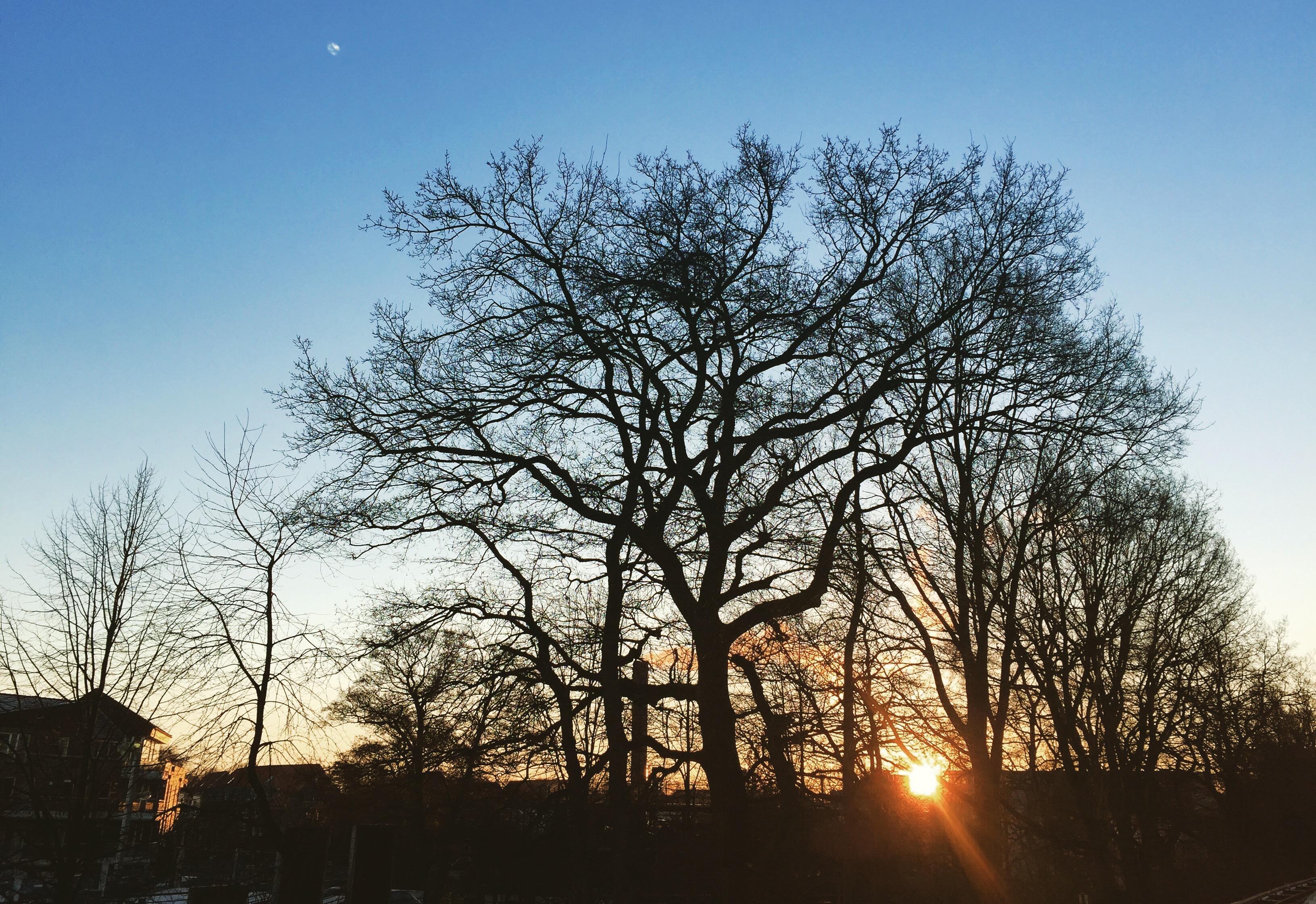 Sonnenaufgang | schokotexte.de